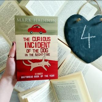 The Curious Incident of the dog in the night time (4)
