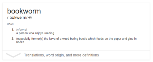 bookworm defined