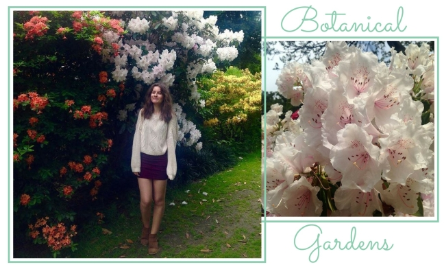 A photo collage showing two photos from the botanical gardens, one showing pale pink flowers, the other showing me standing in front of numerous flower bushes
